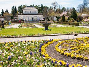 Botanischer Garten Terrasse